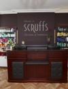 Scruffs Hair